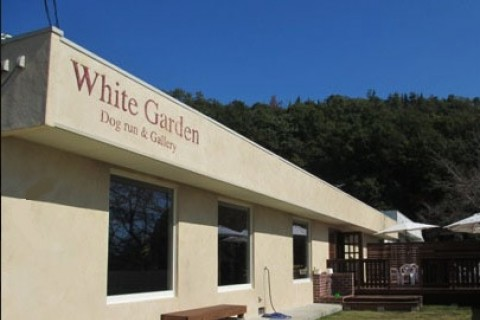 Cafe White Garden(Gallery722)